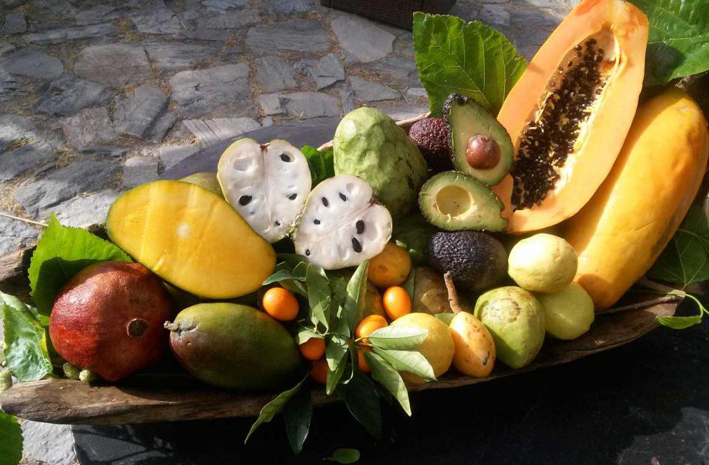 Agroturismo Frutas Tropicales