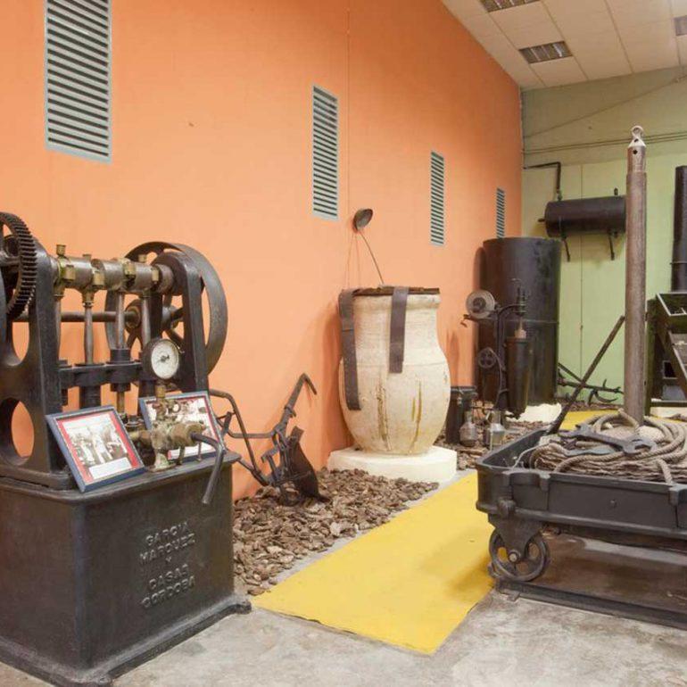 museo-aceite-velez